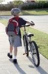 .jpg photo of Child Safety
