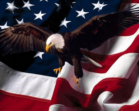 .jpg photo of the American Flag and a Bald Eagle